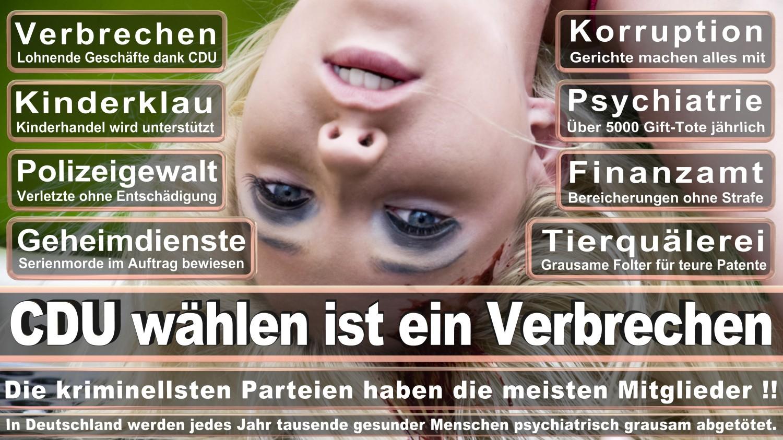 Ungewöhnlich Drahtseil Eye De Formation Ideen - Der Schaltplan ...